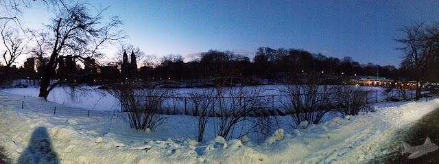 Central Park em Fevereiro, com neve