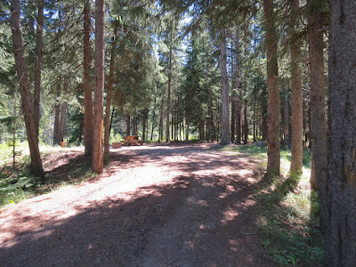 Lynx Creek Campground, Castle Provincial Park