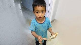 Παιδάκι πάτησε κατά λάθος ένα μικρό κοτόπουλο και το πήγε στο νοσοκομείο