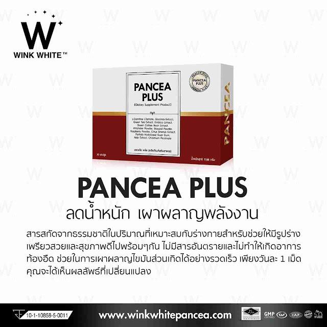 PANCEAPLUS