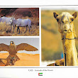 Animals of UAE