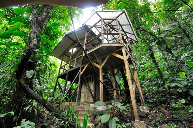 "The rain forest goes through a ""dry season Mid-December through May. The ""rainer"" season is from June to November. Although, no matter the seasons, you can always expect rain. - Your Childhood Dreams Will Be Re-Awakened When You See These Magical Treehouses."