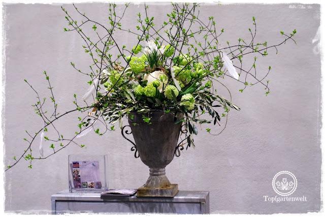 Gartenblog Topfgartenwelt Gartenmesse: Garten Salzburg 2017 Floristik