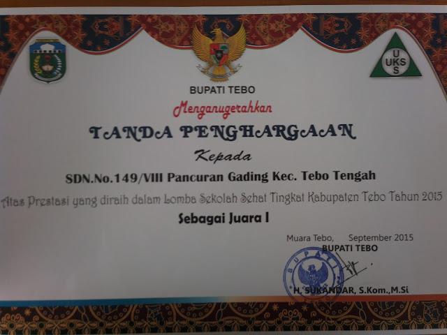 Potret Pennghargaan yang diraih SD Negeri 149/VIII Muara Tebo