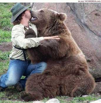 36 best I LOVE BLACK BEARS!!! images on Pinterest ... |Funny Black Bear Family