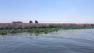 بحيرة المنزلة