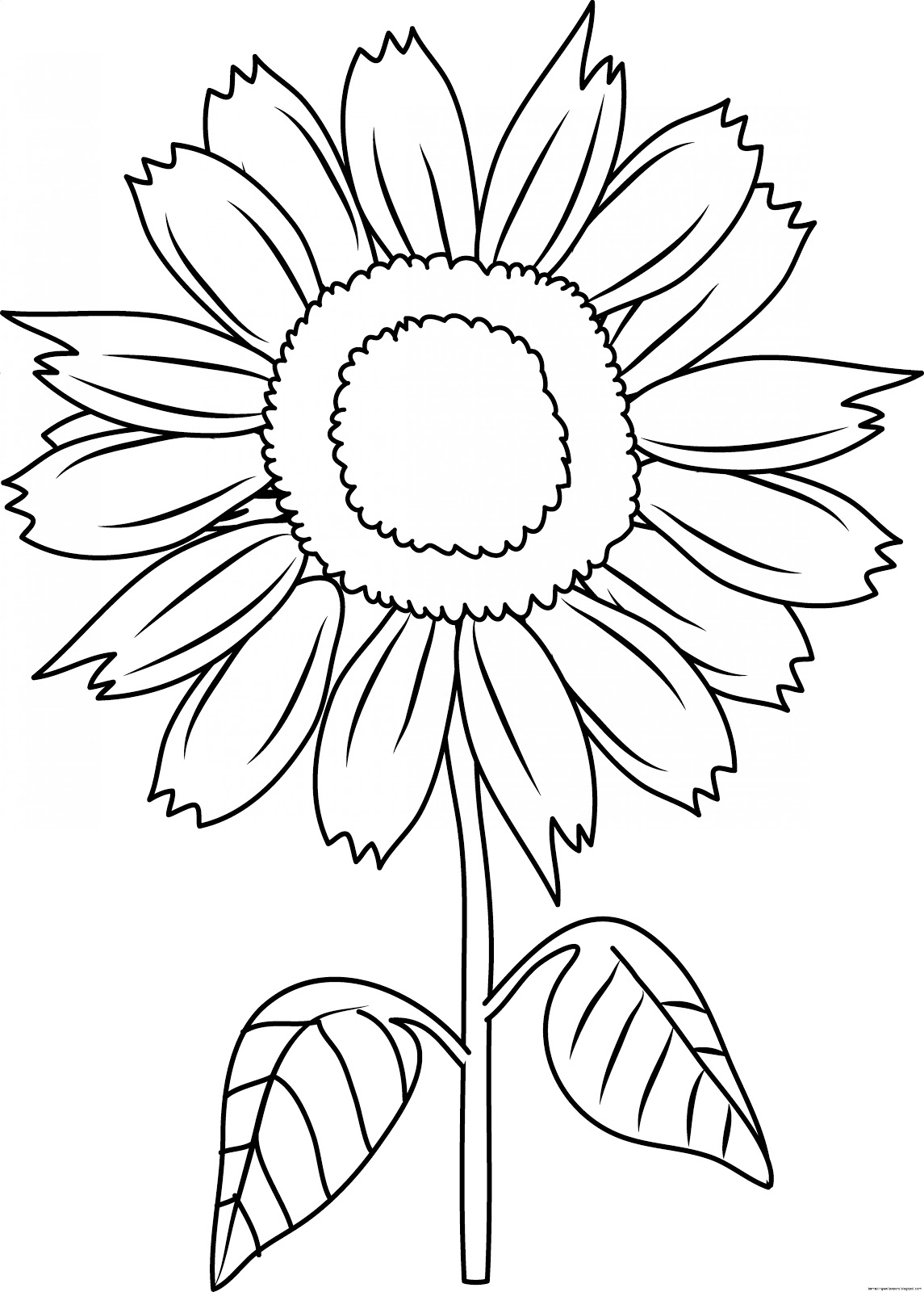 Sunflowers Clip Art Black And White
