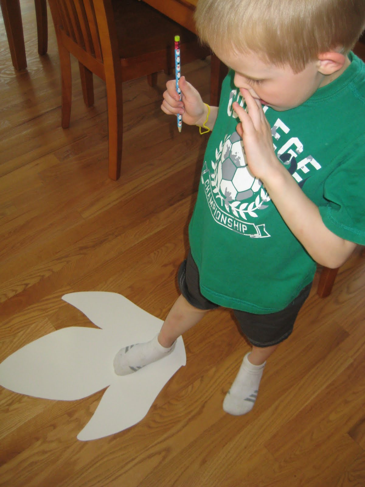 Dinosaur Counting And Measuring