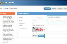 Solusi Lupa Password dan Lupa Email DJPonline
