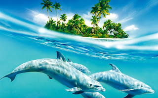 Dolphins Underwater Half View Tropic Island HD Wallpaper