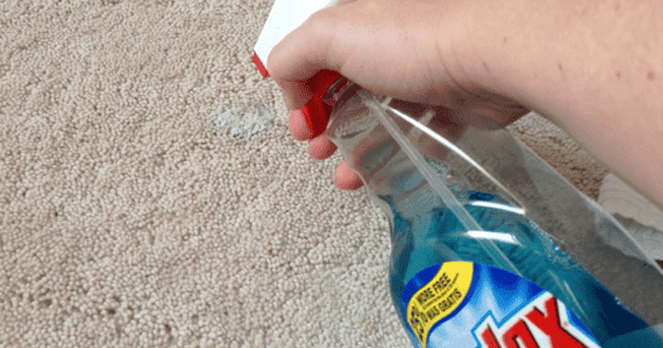 How to Remove a Carpet Stain With an Iron