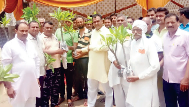 Kua Pooja done on the birth anniversary of the granddaughter, Plants of skill to Brahmins