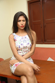 Nishi Ganda stunning cute in Flower Print short dress at Tick Tack Movie Press Meet March 2017 228.JPG