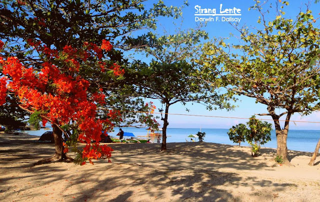 beaches in batangas