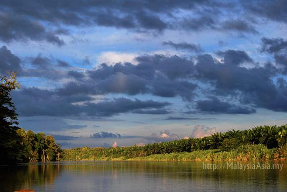Sabah Danau Girang Conservation