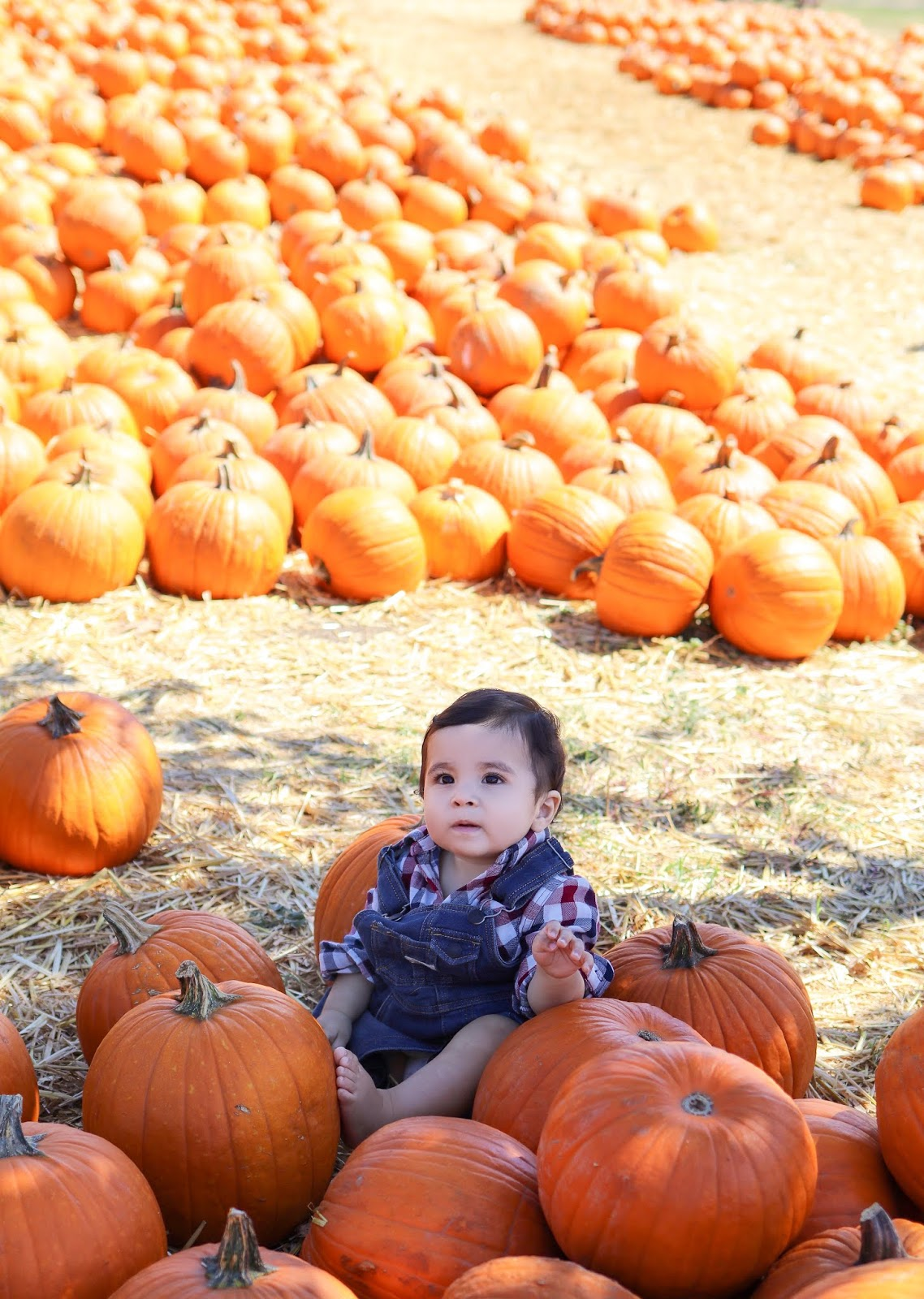 Baby pictures at the pumpkin patch