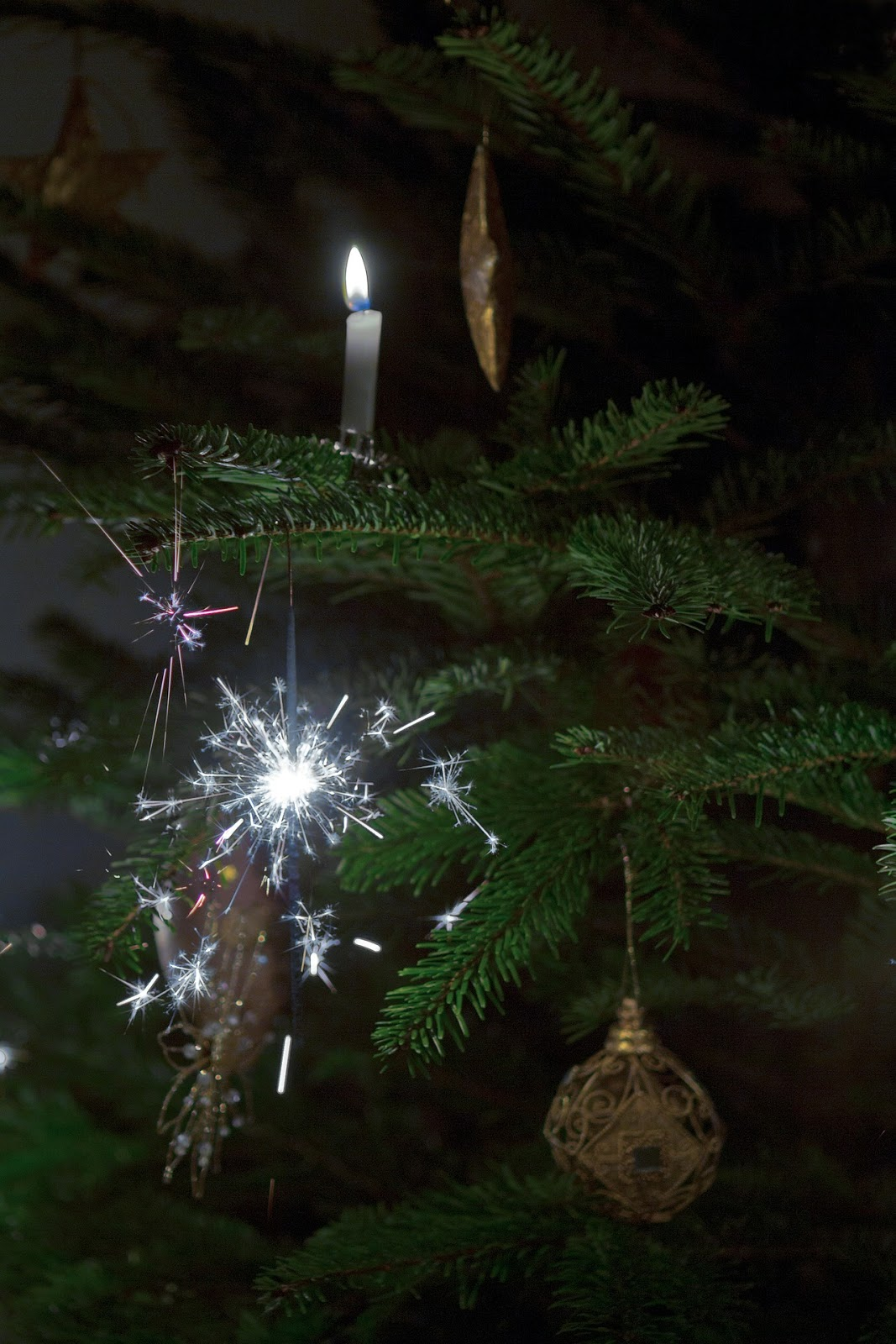 Where Did Christmas Trees Originate From