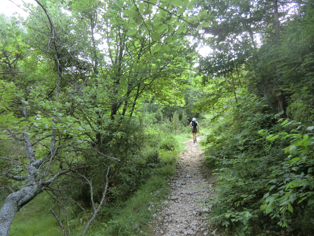 Trail passing Bastide de Viériou