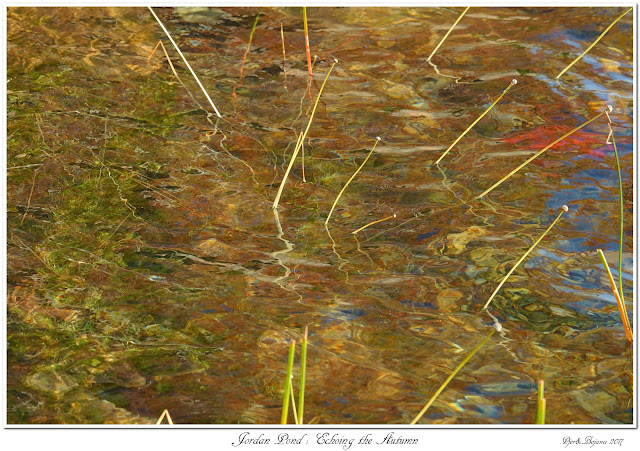 Jordan Pond: Echoing the Autumn