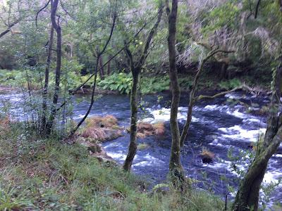 By E.V.Pita / River Mandeo (Galicia, Spain) / Autor: E.V.Pita / Río Mandeo (Coirós)