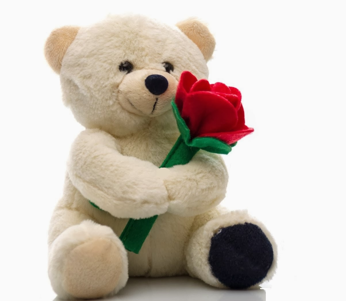 teddy day hd pic