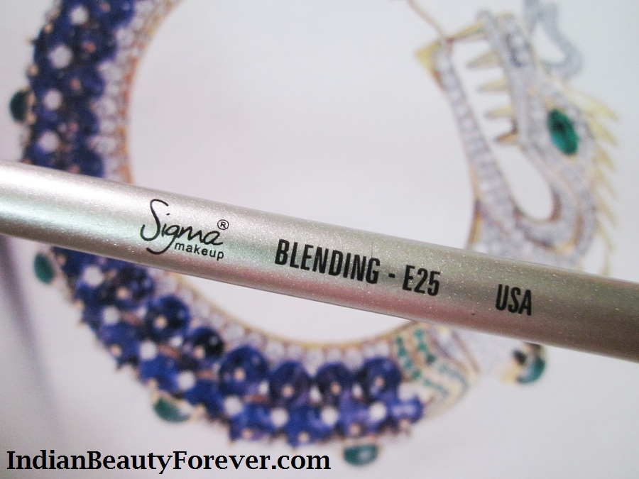 Sigma Blending Brush E 25 Review