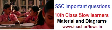 SSC Important question for Slow learners material of C & D Group for AP / TS Students