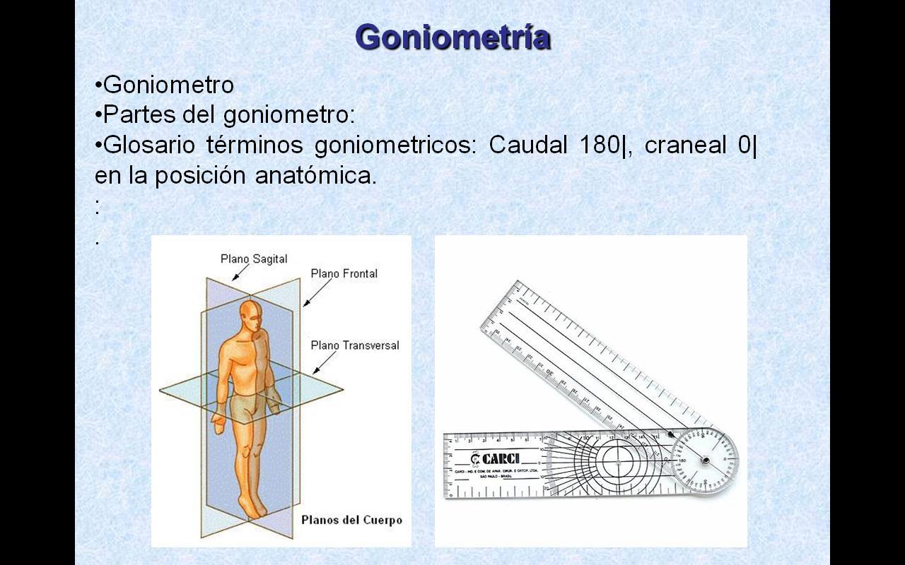 Definición y Fundamentos de Medicina Física y Rehabilitacion