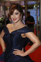 Payal Ghosh aka Harika in Dark Blue Deep Neck Sleeveless Gown at 64th Jio Filmfare Awards South 2017 ~  Exclusive 138.JPG