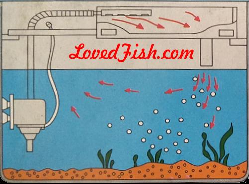 Lovedfish Peralatan