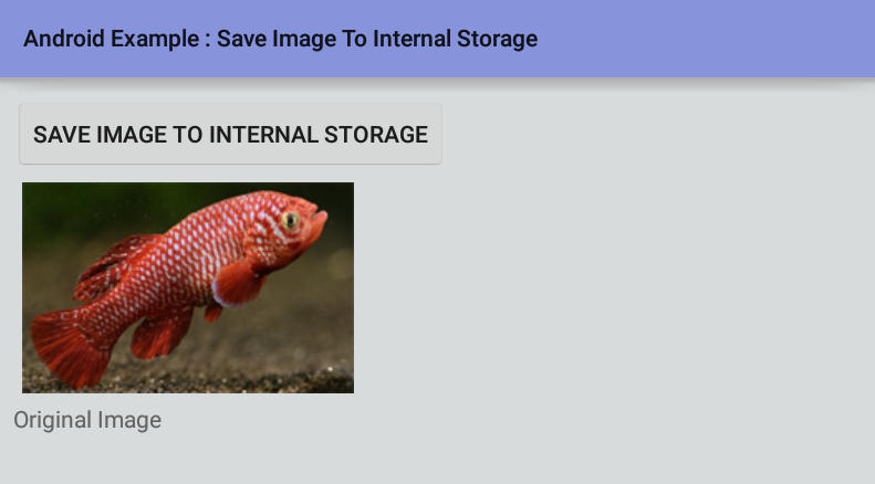 android - How to save an image to internal storage