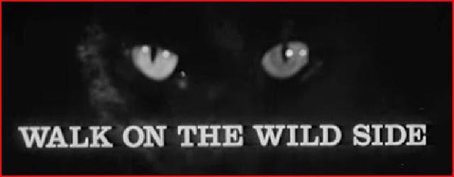 Walk on the Wild Side randommusings.filminspector.com