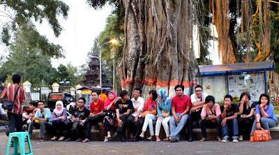 Budidaya Jahe Indonesia Memecahkan Rekor Dunia