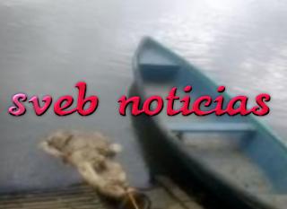 Tiradero de cuerpos en los Rios Papaloapan y el Tesechoacan; van 8