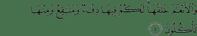 Surat An Nahl Ayat 5