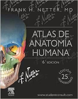 Anatomia de grey libro pdf descargar gratis