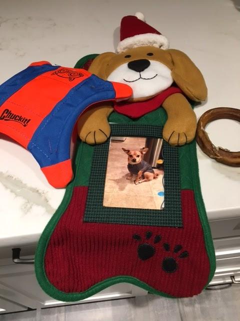 doggie Christmas stocking
