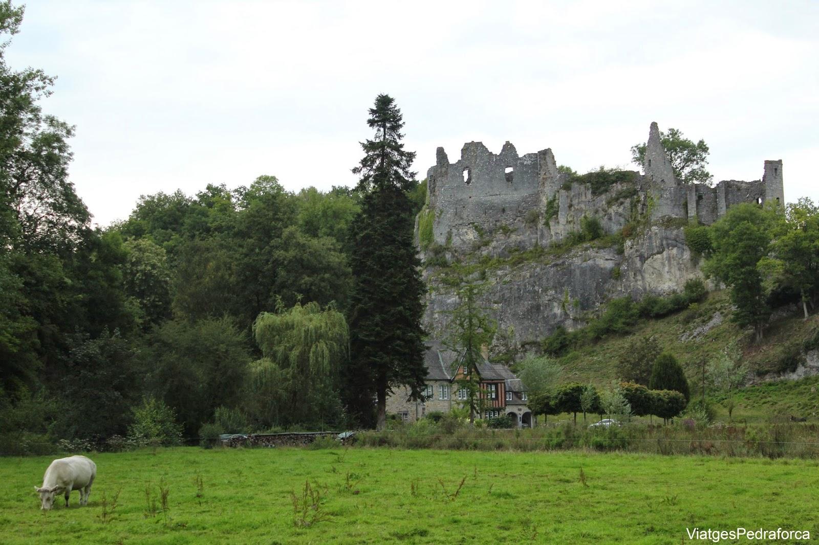 Chateau de Montaigle Falaën Valonia Belgica