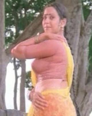 Desi Actress Geetha Hot Photos Collection Actually This Photos