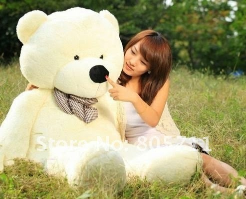 teddy day wallpapers for facebook,googleplus sharing