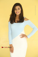 Anisha Ambrose Latest Pos Skirt at Fashion Designer Son of Ladies Tailor Movie Interview .COM 0678.JPG