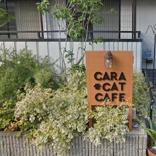 Cara Cat Cafeの看板