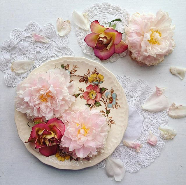 bymeeni, Madeline Norris, bymeeni on Instagram, #collectandstyle Instagram hashtag, floral plate and flowers