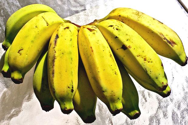 Картинки по запросу Banana Manzano
