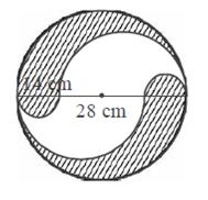 Contoh Soal Dan Pembahasan Tentang Luas Lingkaran