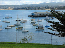 Travel Monterey Bay California