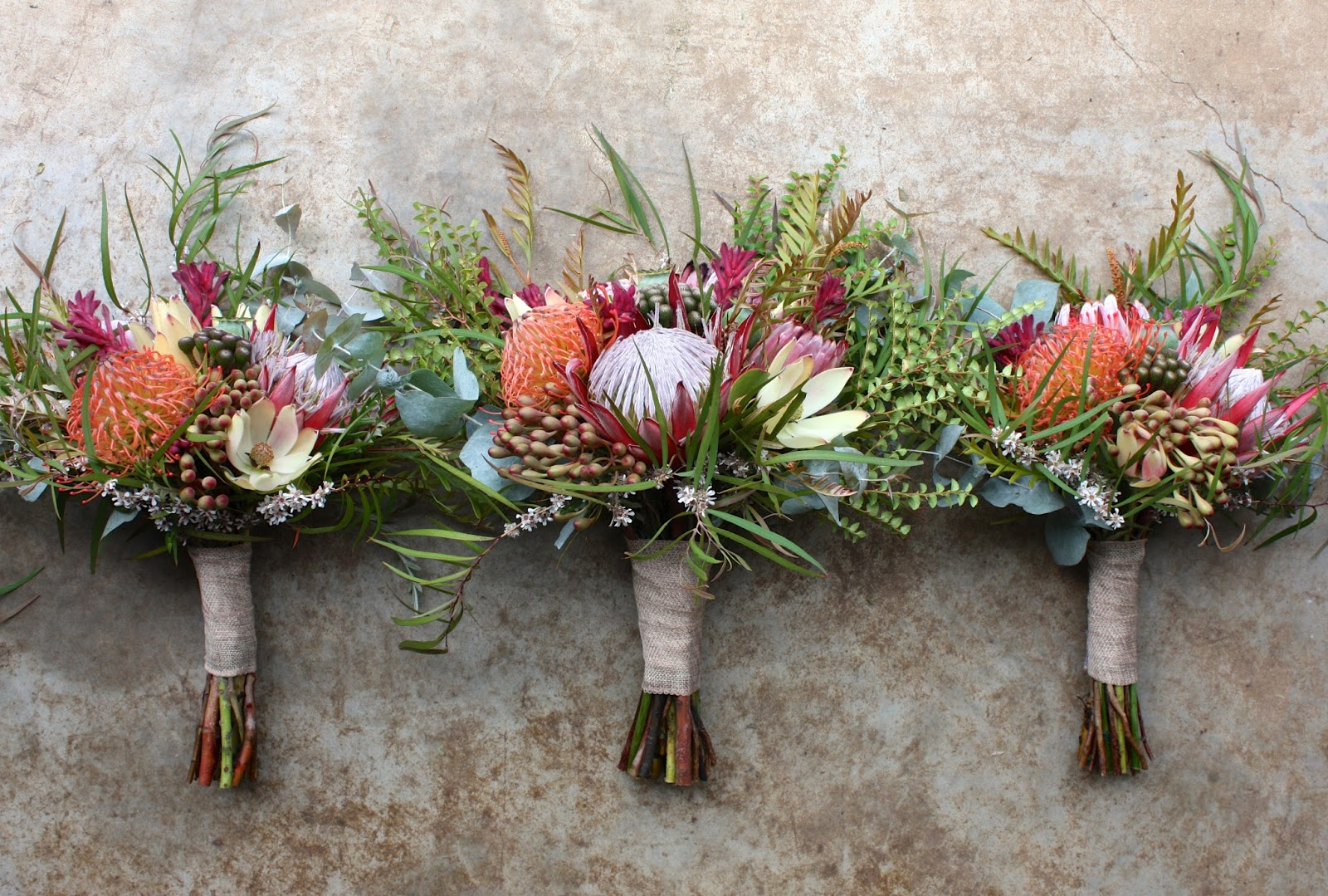 Bridal Flowers Blue Mountains : Swallows nest farm eclectic summer natives for a new