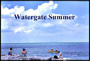 Watergate Summer ( Main Blog)