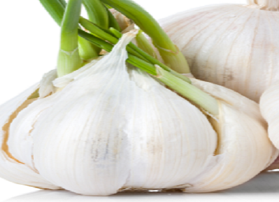 Garlic (lasun) Help you reduce the level of bad cholesterol