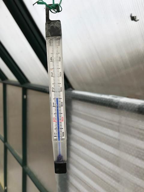 aktuelle Lufttemperatur im Gewächshaus  (c) by Joachim Wenk